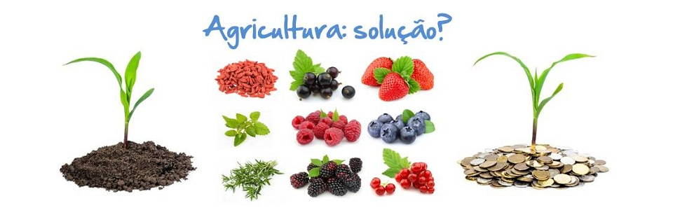 homepage-slide-agricultura-solucao