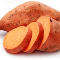 plantar batata doce