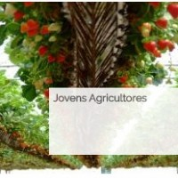 acao 3.1 jovens agricultores