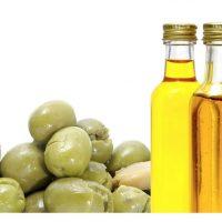 plantar oliveiras